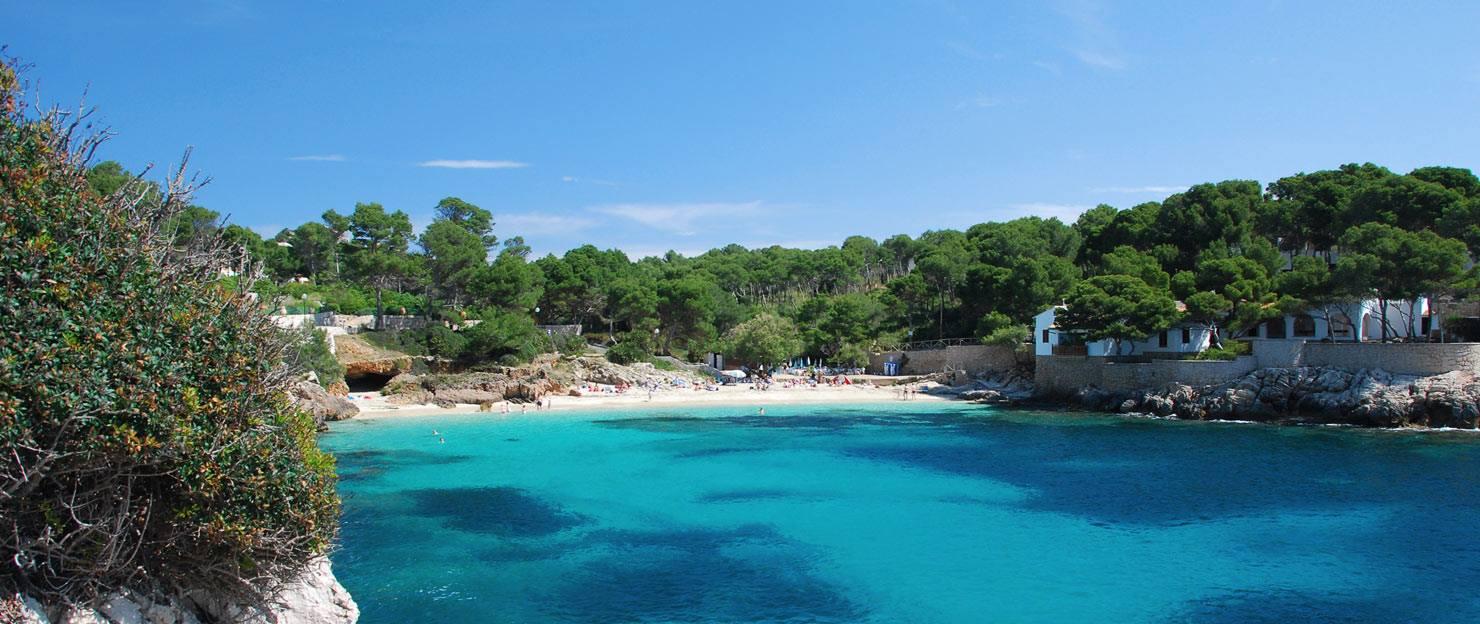Cala Vinyas & Sol de Mallorca property market surroundings.