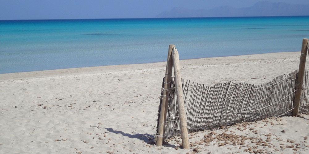 playa-de-muro-alcudia