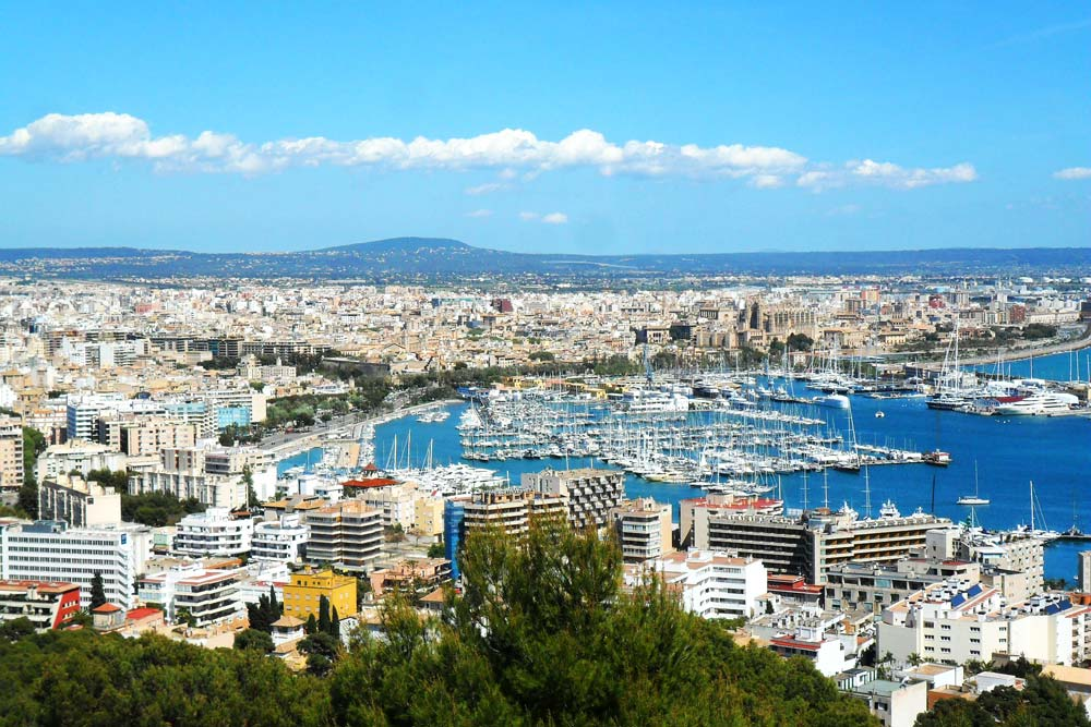 Palma property market view.