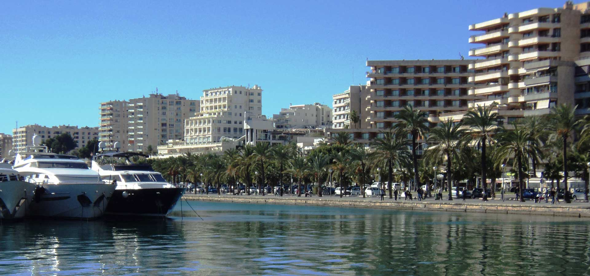 Paseo Maritimo Palma de Mallorca Penthouses Apartments for sale buy real estate property search Casafari