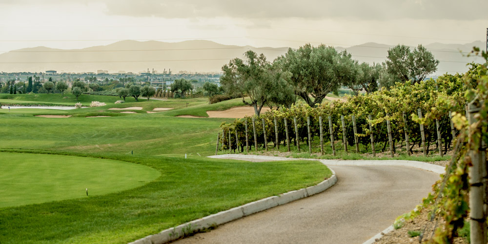 Son Gual property owners enjoy the local golf course surrounded by vineyard.