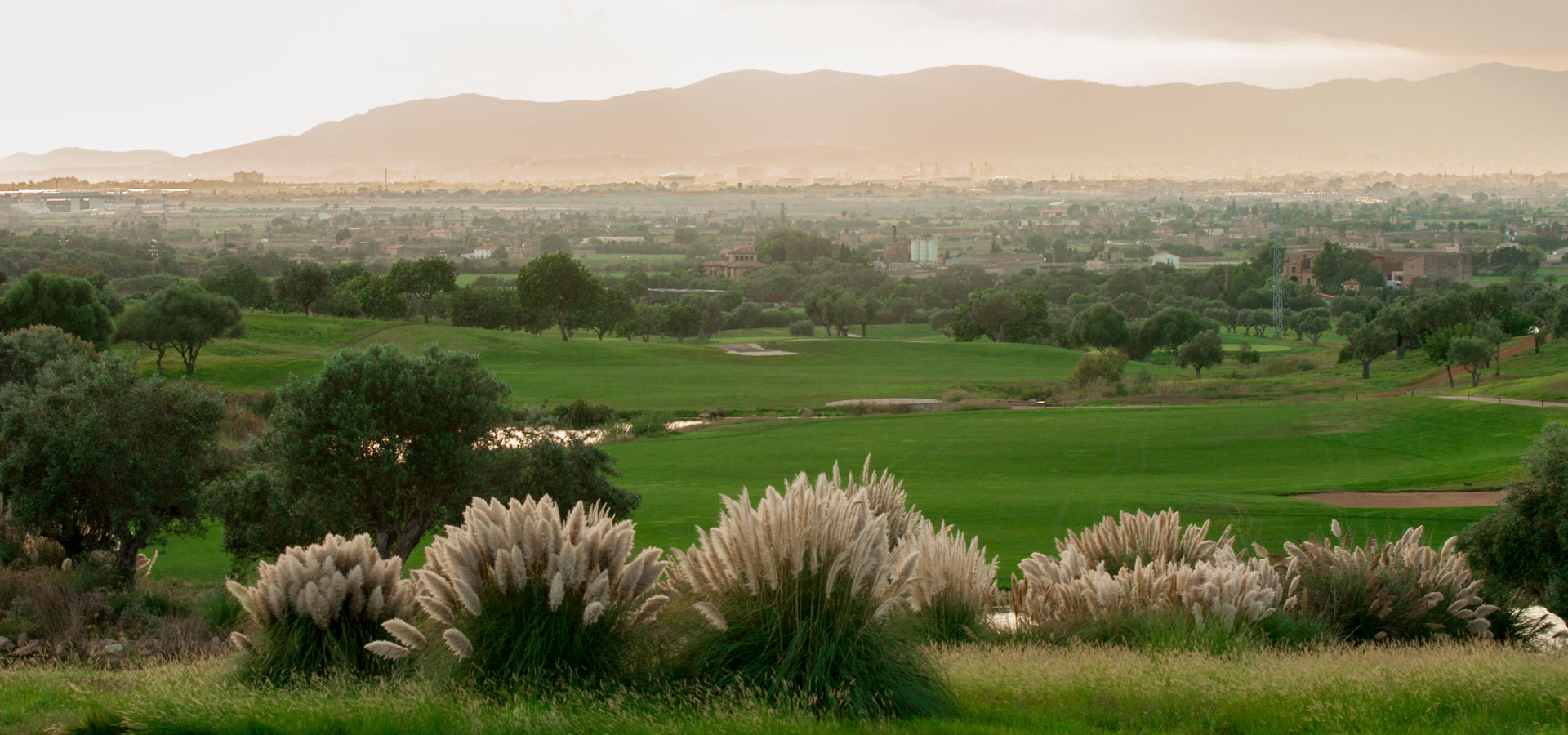 Son Gual property, golf view.