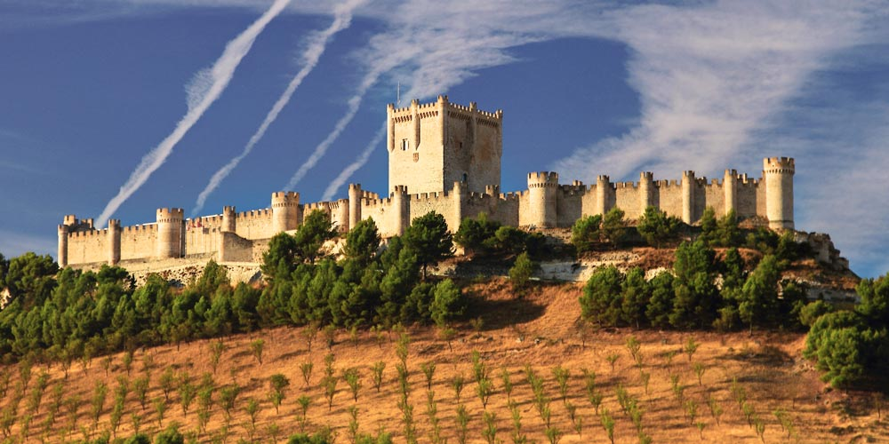 wine maker vineyard Castillo de Peñafiel Valladolid in Spain award winning wine ribero del duero ribeiro for casafari blog article 20 reasons to love about and live in spain buy property for sale real estate malaga mallorca catalunya catalonia
