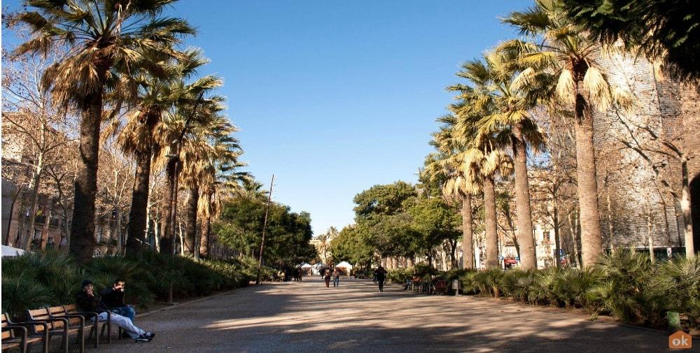 el raval property guide casafari ciutat vella barcelona spain rambla del raval