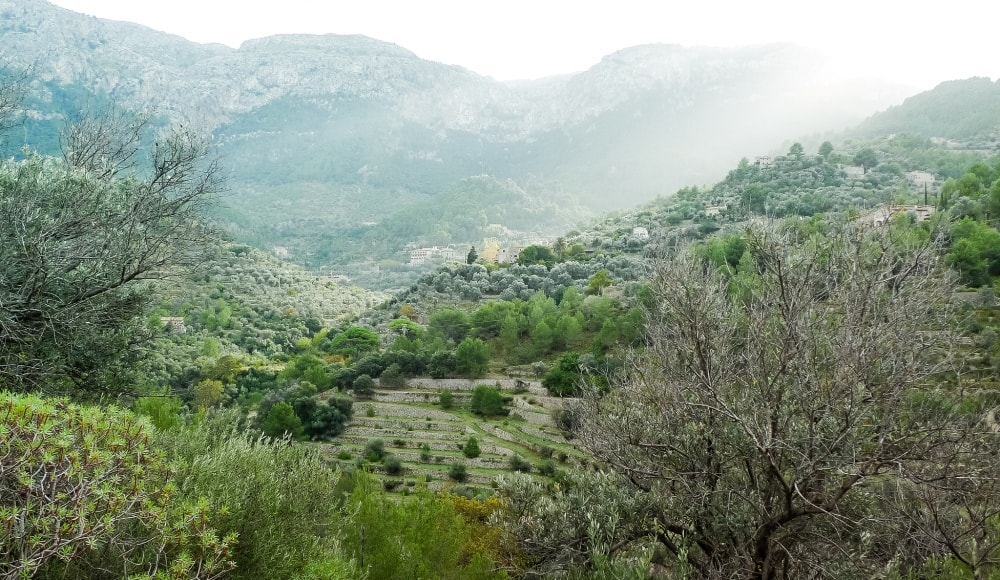 hiking views tramuntana deia mallorca