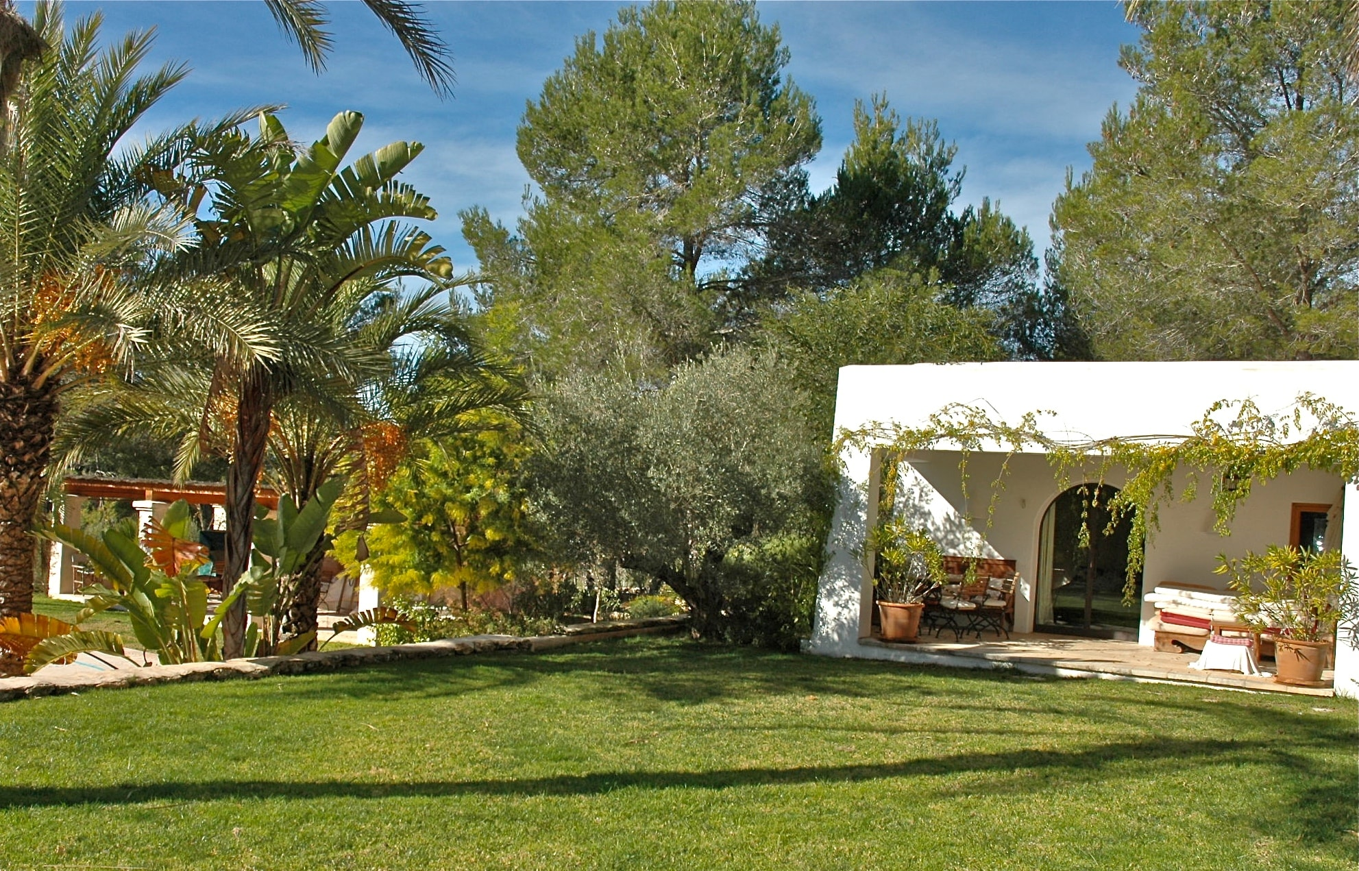 san rafael ibiza spain villa palm trees garden