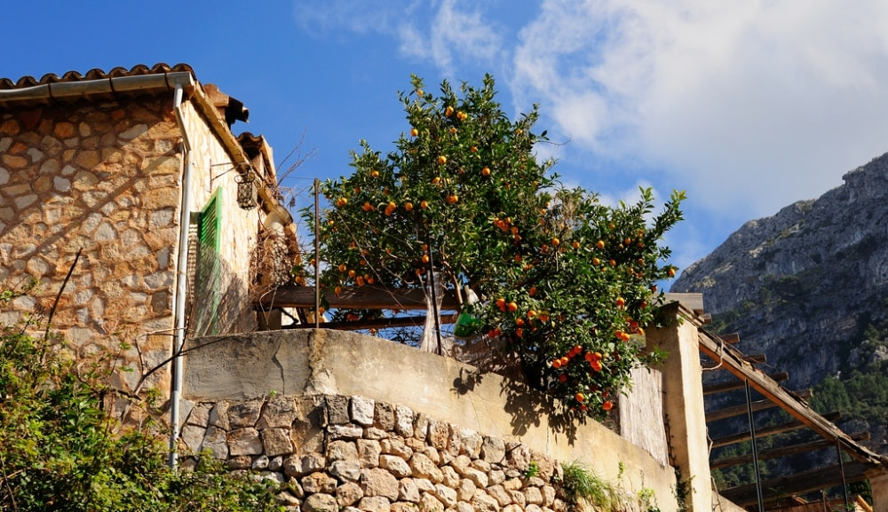 Deia property market is interlaced by narrow alleys from cobblestone.