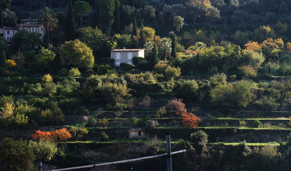 Deia property market is surrounded by beautiful traditional terraces.
