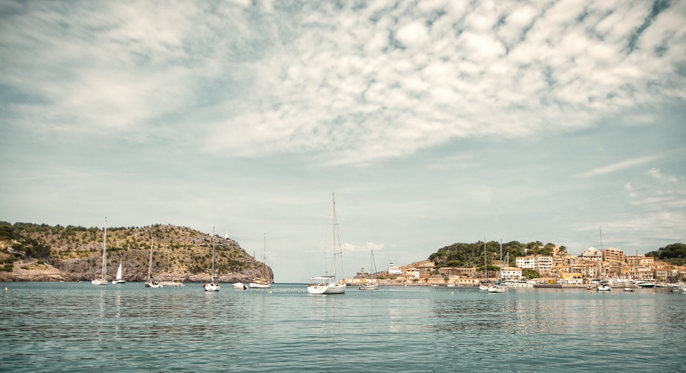 port soller harbour yachts mallorca