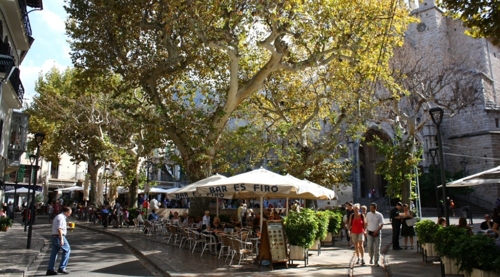 Cafes and restaurants around Soller Town property market range.