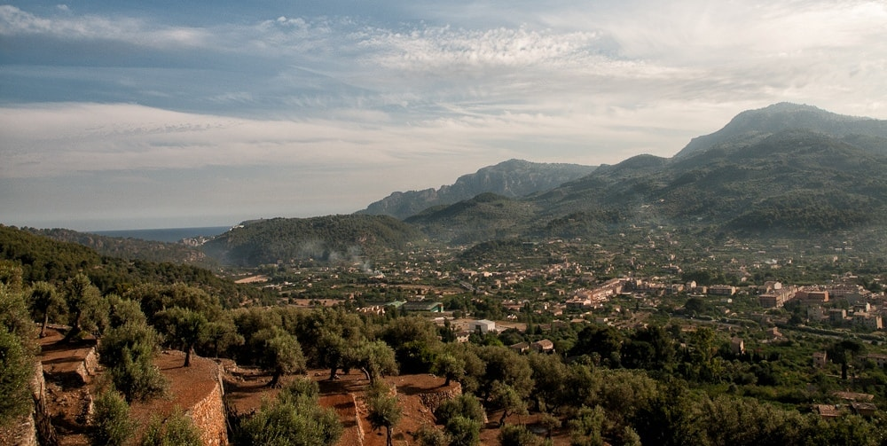 Soller property market view.