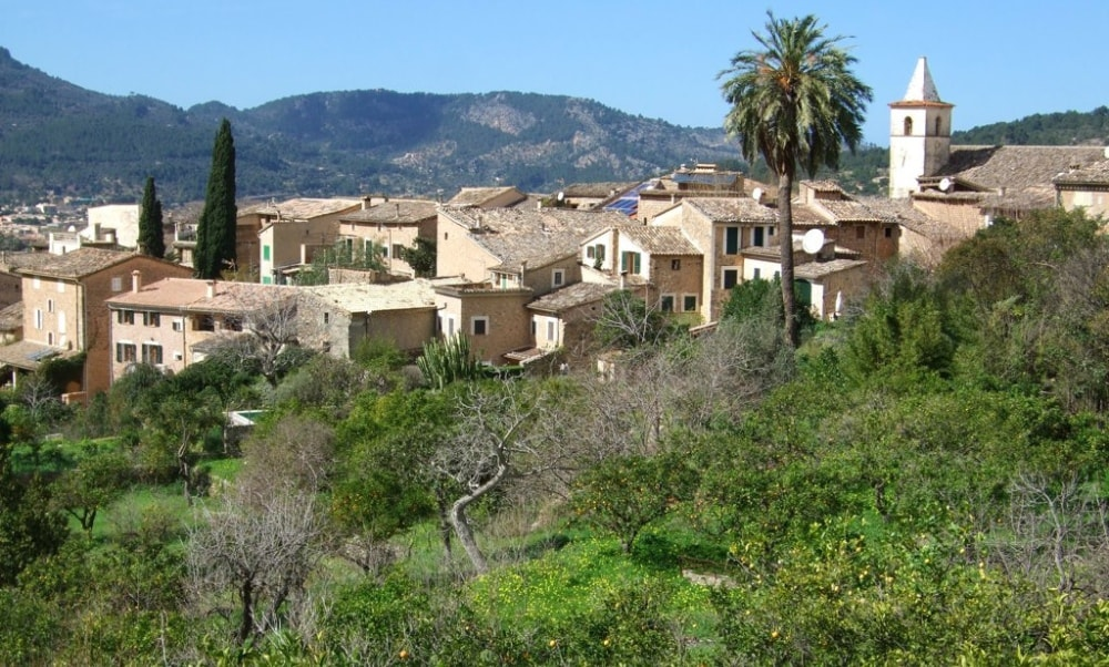 soller town orange groves properties