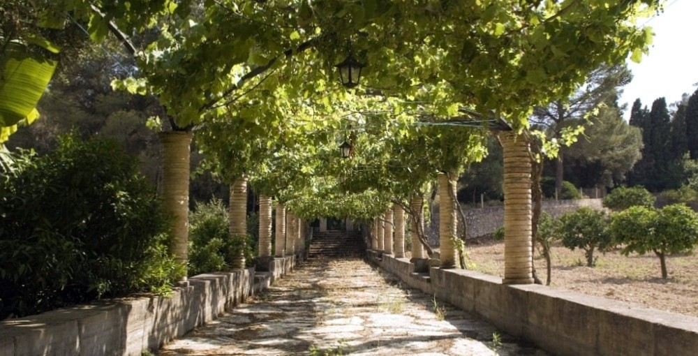 llucmajor town garden mallorca