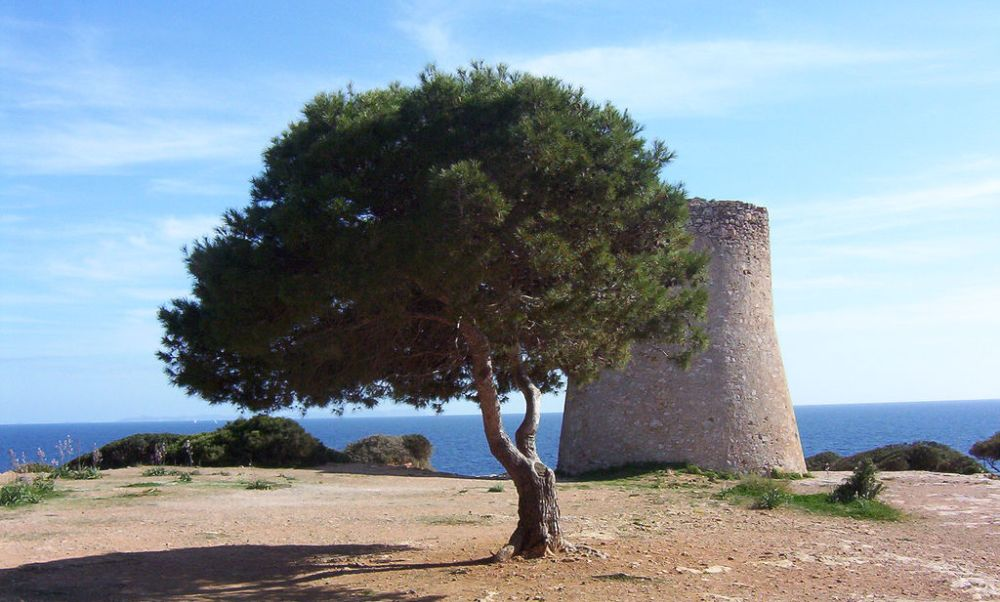 Historic watchtower in Cala Pi property market surroundings.