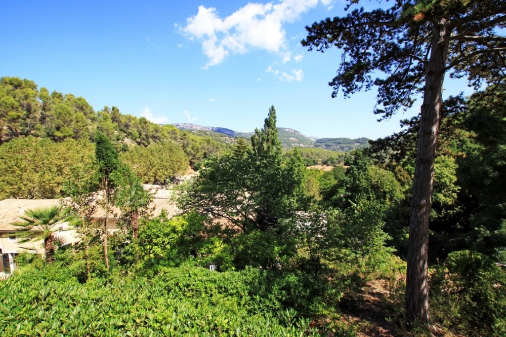 Esporles real estate market is surrounded by unspoilt nature.