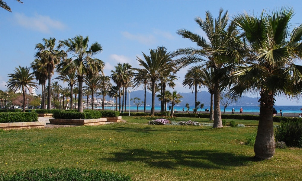 Cala Millor property market ranges all the way to the beachside promenade.