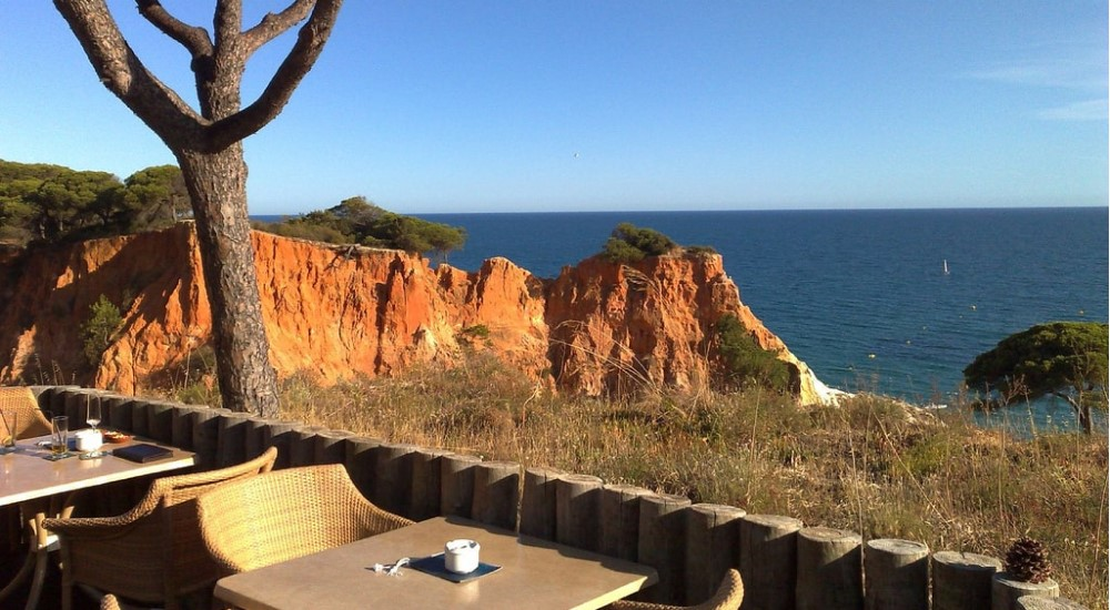 dining in the nature albufeira property guide casafari algarve portugal