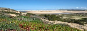 Vila do Bispo Property Guide